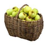 изолированный зеленый цвет корзины яблок Стоковое Изображение RF