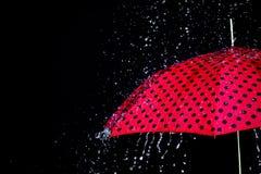 Изолированный зонтик падения дождя Стоковое Изображение RF