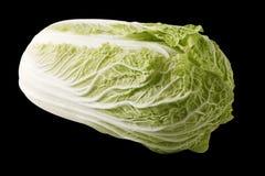 изолированный киец капусты Стоковая Фотография
