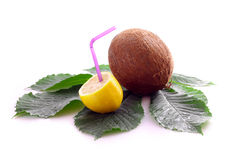 изолированный кокосами лимон листьев Стоковые Фото