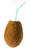 изолированный кокос Стоковые Фото