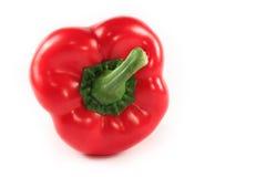 изолированный красный цвет перца Стоковая Фотография