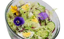 изолированный салат Стоковое Фото