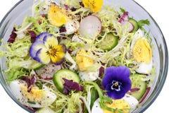 изолированный салат Стоковые Изображения