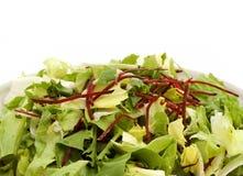 Изолированный салат Стоковая Фотография RF