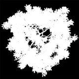 Изолированный силуэт взгляд сверху дерева - бело- вектор иллюстрация штока
