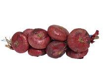 изолированный сноп красного цвета луков Стоковое фото RF