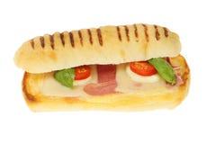 Изолированный сэндвич Panini стоковые изображения rf
