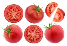 Изолированный томат изолированным на белой предпосылке Коллекция Стоковые Фотографии RF