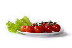изолированный томат плиты салата Стоковая Фотография RF