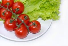 изолированный томат onplate салата Стоковое Фото