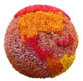 изолированный цветок земли Стоковая Фотография