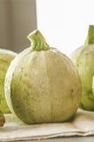 Изолированный цукини vegetable сердцевины сквоша Стоковая Фотография RF