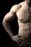 изолированный чернотой торс человека мышечный стоковые фотографии rf
