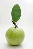изолированный guava плодоовощ Стоковое Фото