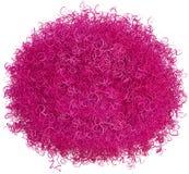 Изолированный Hairball розового Афро волосатый Стоковые Фото