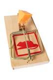 изолированный mousetrap Стоковая Фотография