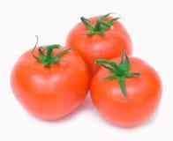 изолировано 3 томатам Стоковые Фотографии RF