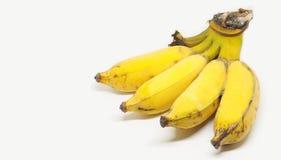 Изолят плода банана двойной на белой предпосылке с космосом ha экземпляра стоковая фотография rf