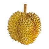 Изолят плодоовощ дуриана на белизне Стоковое фото RF
