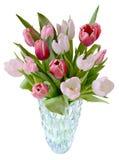 изолированная ваза тюльпанов Стоковое Изображение RF