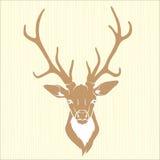 Изолированная голова оленей иллюстрация штока