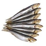 Изолированная еда рыб Стоковые Изображения