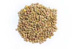 Изолированная еда чечевицы стоковое изображение