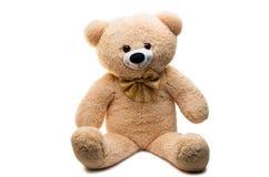 Изолированная игрушка Big Bear мягкая Стоковая Фотография