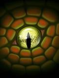 изолированная иллюстрация глаза дракона черноты предпосылки amulet Стоковое Фото