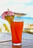 изолированная коктеилом белизна лета тоническая Стоковые Фотографии RF