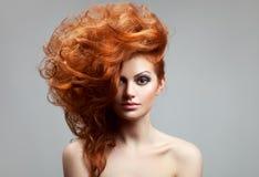 изолированная красоткой белизна портрета hairstyle стоковые фото