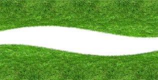 Изолированная кривая пробела зеленой травы Стоковое Изображение RF