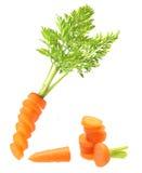 Изолированная морковь Стоковые Фото