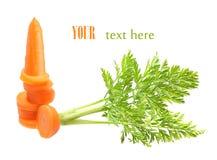 Изолированная морковь Стоковые Фотографии RF