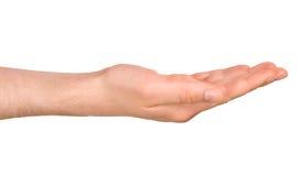 Изолированная мужская рука в положении Стоковая Фотография