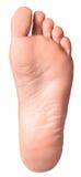 Изолированная нога Стоковые Фотографии RF