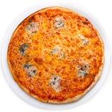 Изолированная пицца сыра 4 Стоковое фото RF