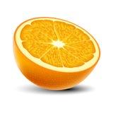 Изолированная покрашенная половина сочного апельсина с тенью на белой предпосылке реалистическо иллюстрация вектора