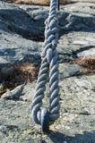 изолированная предпосылкой белизна веревочки предмета петли Стоковые Изображения