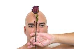 изолированная предпосылкой белизна розы красного цвета человека Стоковые Фотографии RF