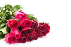 изолированная предпосылкой белизна розы красного цвета Стоковое Фото