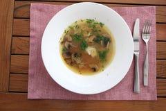 изолированная предпосылкой белизна супа плиты гриба Стоковое Изображение RF