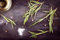 изолированная предпосылкой белизна rosemary масла прованская Стоковое фото RF