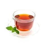 Изолированная прозрачная чашка черного чая с лист мяты на белизне стоковые изображения rf