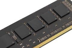 Изолированная плата с печатным монтажом RAM компьютера Стоковое фото RF
