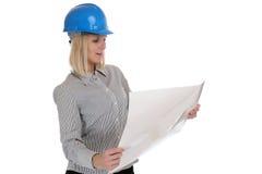 Изолированная работа занятия женщины плана чтения молодой женщины архитектора Стоковые Фото