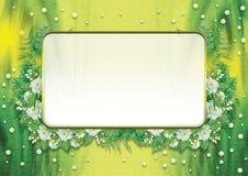 Изолированная рамка жасмина Стоковая Фотография RF