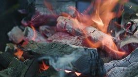 изолированная решетка барбекю Горячий уголь и горящие пламена сток-видео