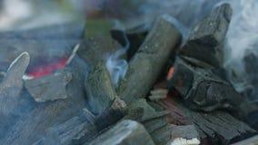 изолированная решетка барбекю Горячий уголь и горящие пламена акции видеоматериалы